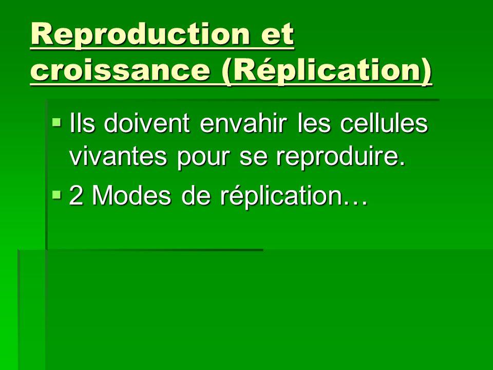 1) Le cycle lytique 1) Le cycle lytique La cellule hôte est détruite.