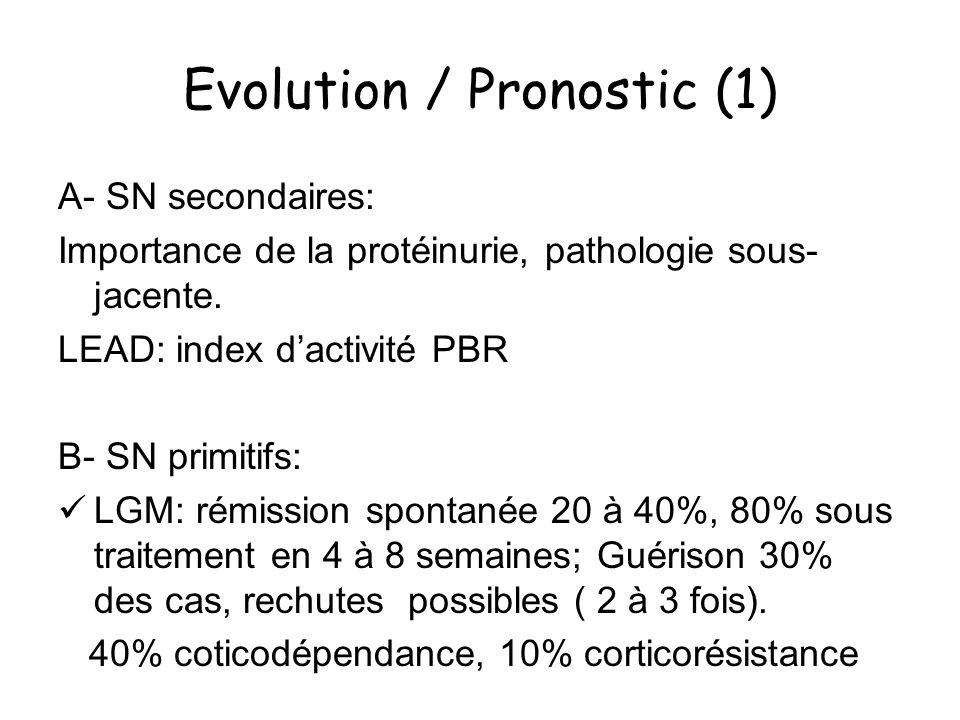 Evolution / Pronostic (1) A- SN secondaires: Importance de la protéinurie, pathologie sous- jacente. LEAD: index dactivité PBR B- SN primitifs: LGM: r
