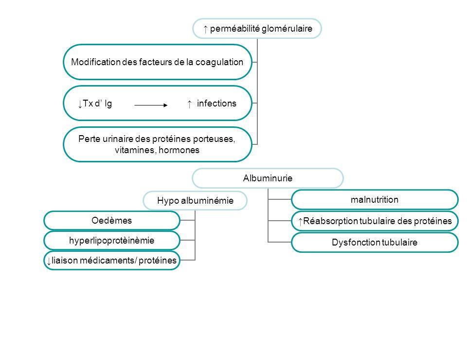 perméabilité glomérulaire Modification des facteurs de la coagulation Tx d Ig infections Perte urinaire des protéines porteuses, vitamines, hormones A