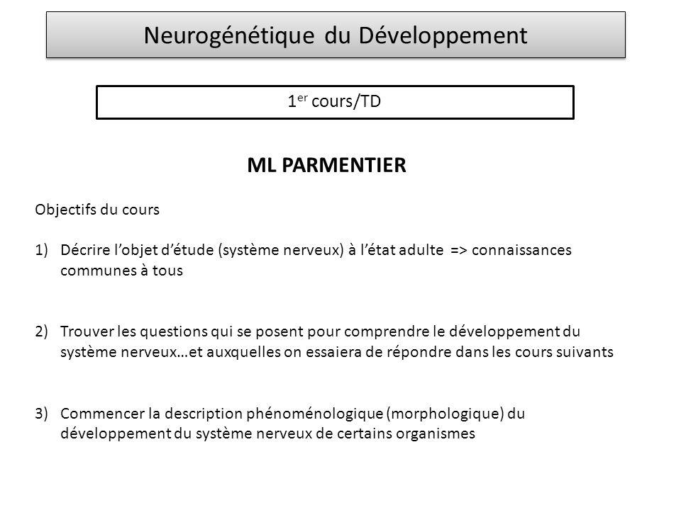 Neurogénétique du Développement 1 er cours/TD ML PARMENTIER Objectifs du cours 1)Décrire lobjet détude (système nerveux) à létat adulte => connaissanc