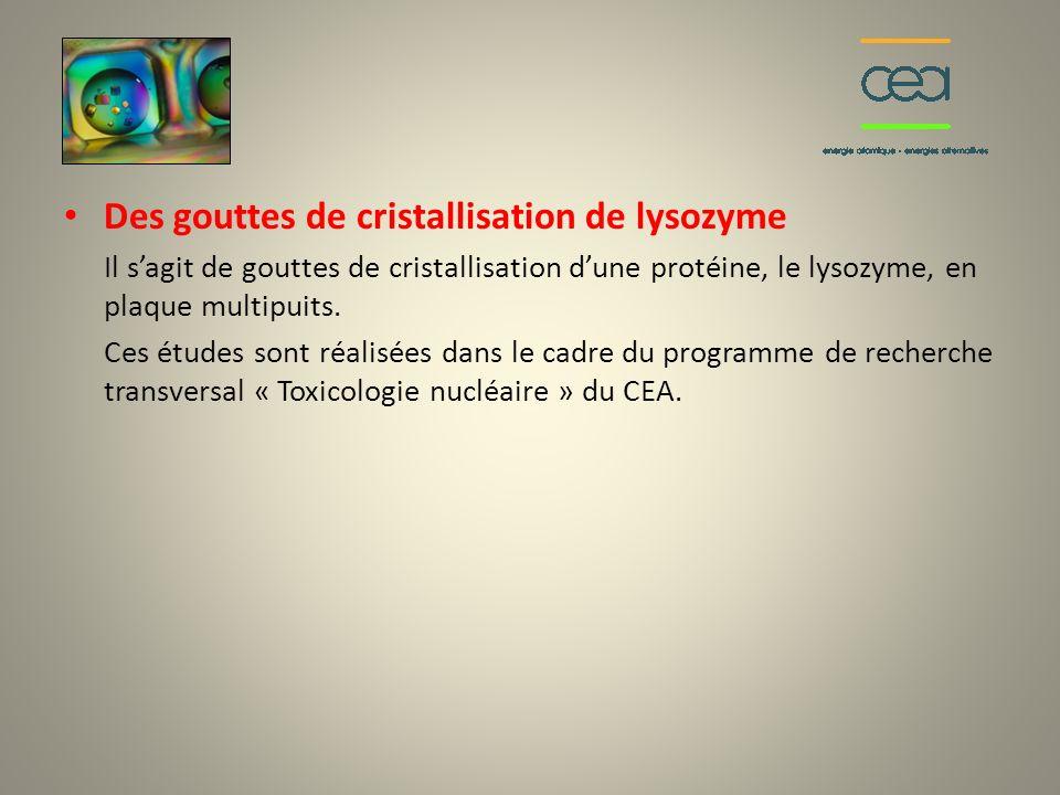 Des gouttes de cristallisation de lysozyme Il sagit de gouttes de cristallisation dune protéine, le lysozyme, en plaque multipuits. Ces études sont ré
