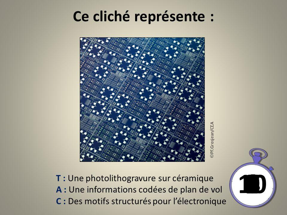 Ce cliché représente : T : Une photolithogravure sur céramique A : Une informations codées de plan de vol C : Des motifs structurés pour lélectronique