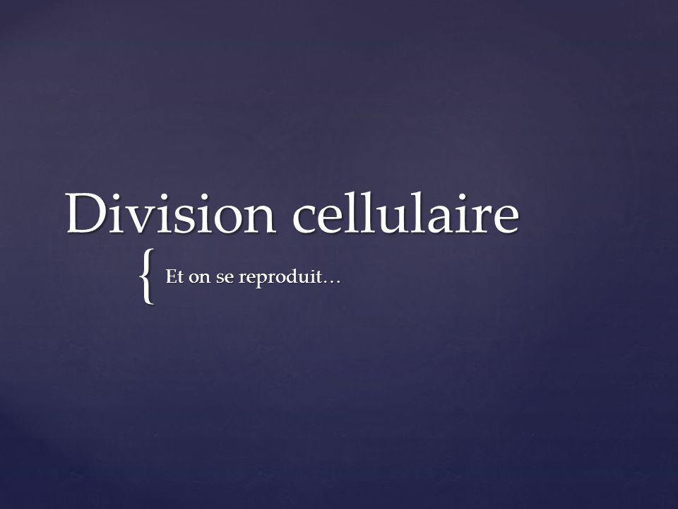 Les 3 phases du cycle cellulaire… Interphase Mitose Cytocinèse