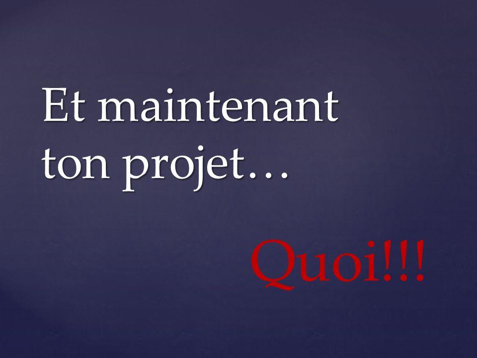 Et maintenant ton projet… Quoi!!!