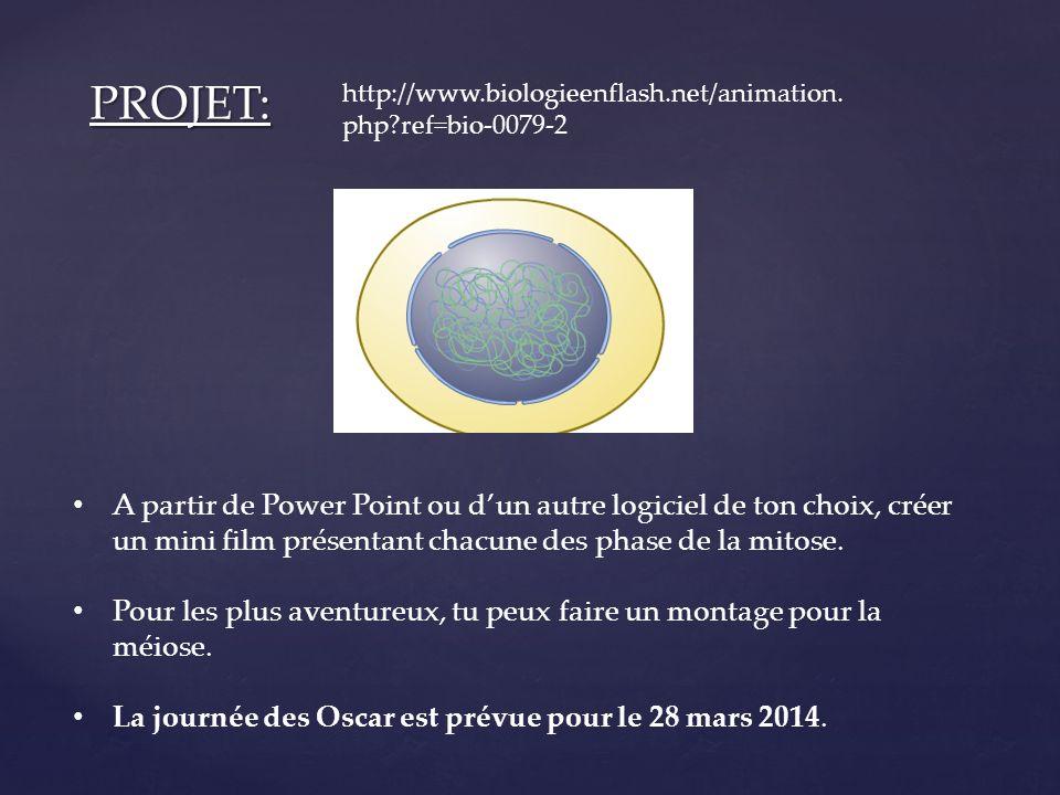 PROJET: A partir de Power Point ou dun autre logiciel de ton choix, créer un mini film présentant chacune des phase de la mitose. Pour les plus aventu