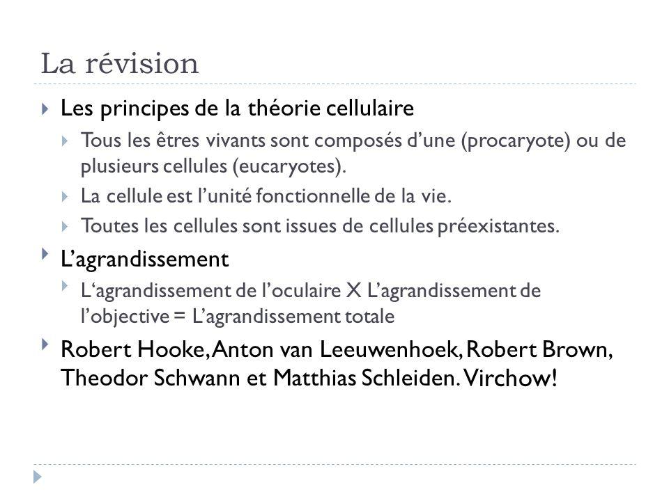 La révision Les principes de la théorie cellulaire Tous les êtres vivants sont composés dune (procaryote) ou de plusieurs cellules (eucaryotes). La ce