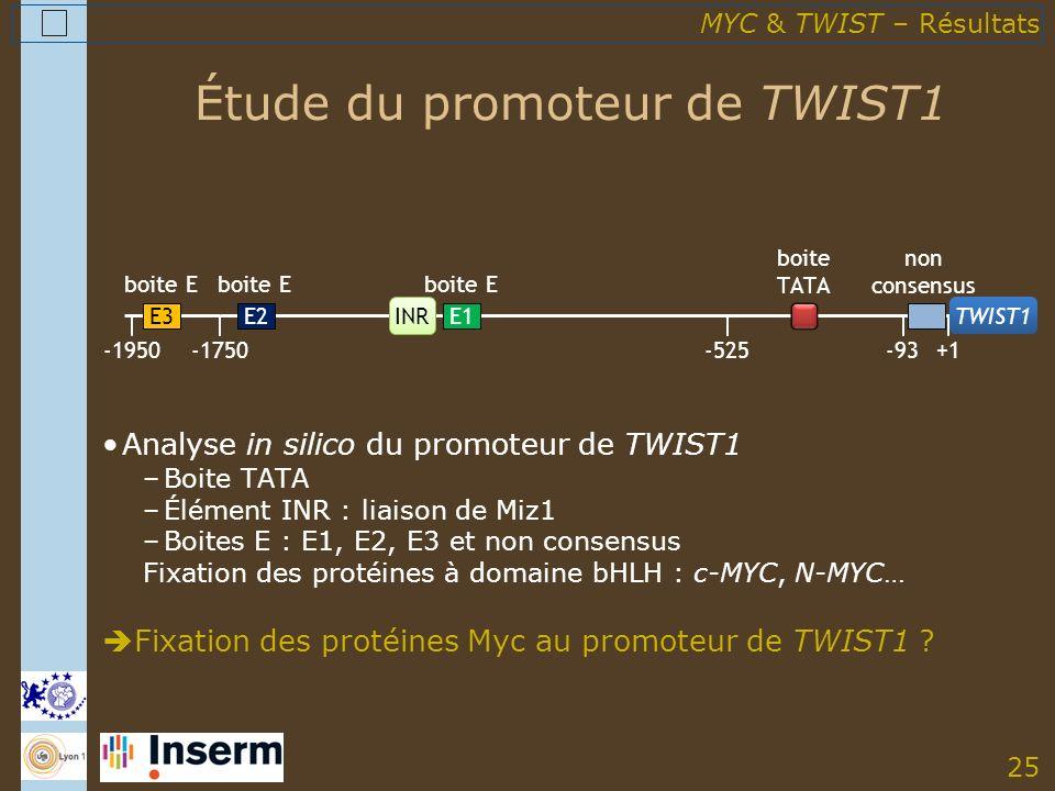 25 Étude du promoteur de TWIST1 -1950 E3 non consensus -1750-525+1 E2 boite E E1 boite E -93 boite TATA INR TWIST1 Analyse in silico du promoteur de TWIST1 –Boite TATA –Élément INR : liaison de Miz1 –Boites E : E1, E2, E3 et non consensus Fixation des protéines à domaine bHLH : c-MYC, N-MYC… Fixation des protéines Myc au promoteur de TWIST1 .