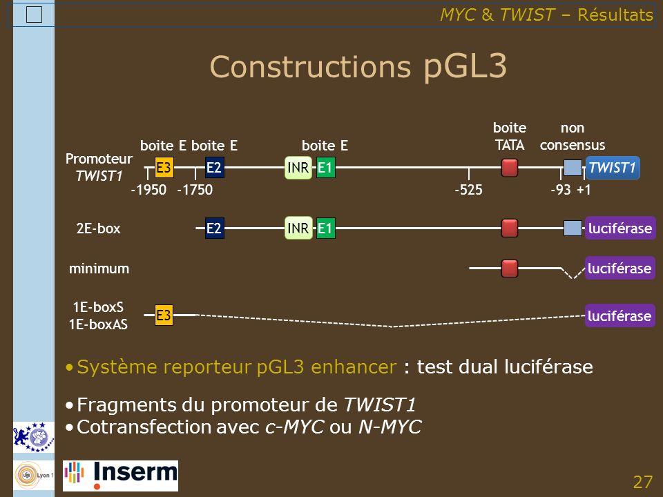 27 Constructions pGL3 Système reporteur pGL3 enhancer : test dual luciférase Fragments du promoteur de TWIST1 Cotransfection avec c-MYC ou N-MYC Promoteur TWIST1 -1950 E3 -1750-525 TWIST1 E2 boite E E1 boite E INR +1-93 non consensus boite TATA 2E-box E2E1 INRluciférase minimum luciférase 1E-boxS 1E-boxAS E3 luciférase MYC & TWIST – Résultats