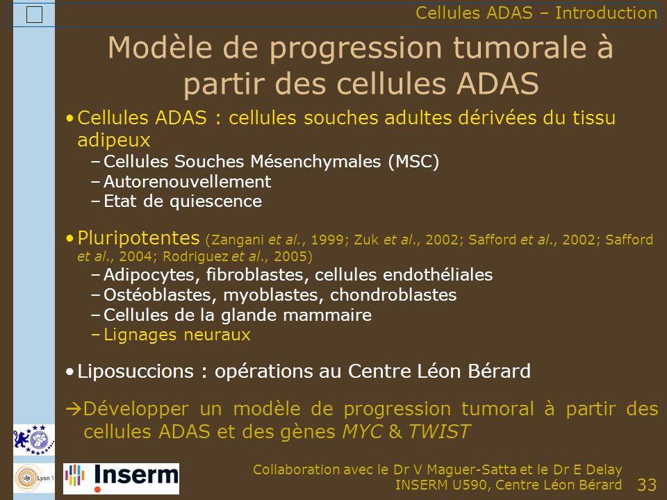 33 Modèle de progression tumorale à partir des cellules ADAS Cellules ADAS : cellules souches adultes dérivées du tissu adipeux –Cellules Souches Mésenchymales (MSC) –Autorenouvellement –Etat de quiescence Pluripotentes (Zangani et al., 1999; Zuk et al., 2002; Safford et al., 2002; Safford et al., 2004; Rodriguez et al., 2005) –Adipocytes, fibroblastes, cellules endothéliales –Ostéoblastes, myoblastes, chondroblastes –Cellules de la glande mammaire –Lignages neuraux Liposuccions : opérations au Centre Léon Bérard Développer un modèle de progression tumoral à partir des cellules ADAS et des gènes MYC & TWIST Cellules ADAS – Introduction Collaboration avec le Dr V Maguer-Satta et le Dr E Delay INSERM U590, Centre Léon Bérard