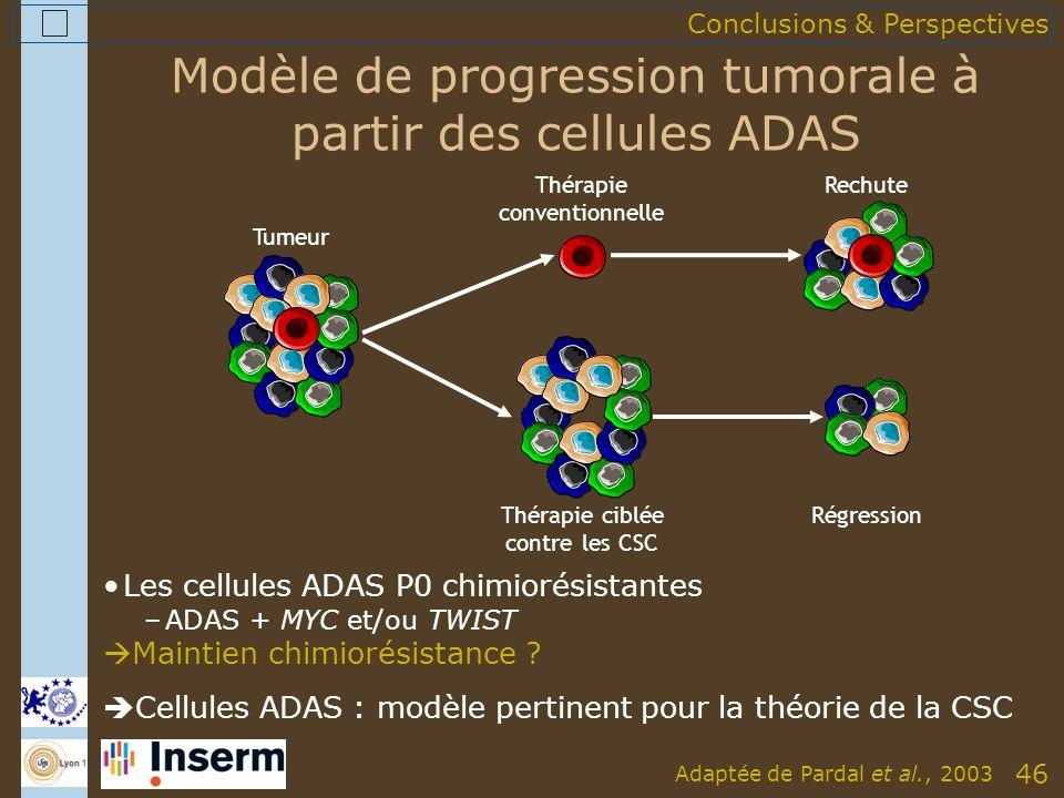 46 Modèle de progression tumorale à partir des cellules ADAS Les cellules ADAS P0 chimiorésistantes –ADAS + MYC et/ou TWIST Maintien chimiorésistance .