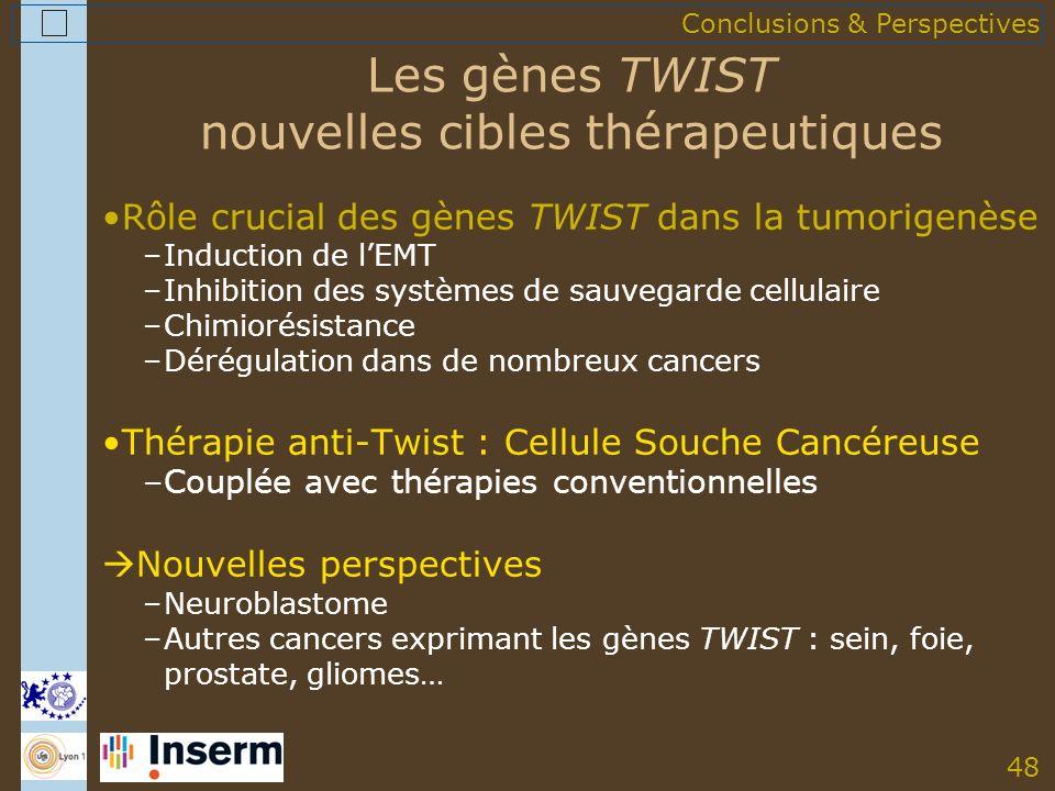 48 Les gènes TWIST nouvelles cibles thérapeutiques Rôle crucial des gènes TWIST dans la tumorigenèse –Induction de lEMT –Inhibition des systèmes de sauvegarde cellulaire –Chimiorésistance –Dérégulation dans de nombreux cancers Thérapie anti-Twist : Cellule Souche Cancéreuse –Couplée avec thérapies conventionnelles Nouvelles perspectives –Neuroblastome –Autres cancers exprimant les gènes TWIST : sein, foie, prostate, gliomes… Conclusions & Perspectives