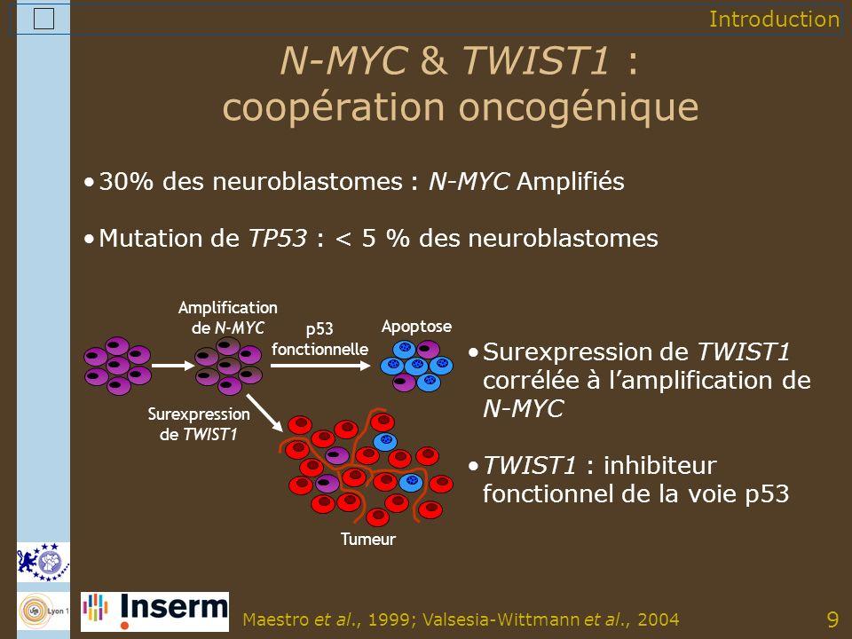 9 N-MYC & TWIST1 : coopération oncogénique 30% des neuroblastomes : N-MYC Amplifiés Mutation de TP53 : < 5 % des neuroblastomes Surexpression de TWIST1 Tumeur Apoptose Amplification de N-MYC p53 fonctionnelle Surexpression de TWIST1 corrélée à lamplification de N-MYC TWIST1 : inhibiteur fonctionnel de la voie p53 Maestro et al., 1999; Valsesia-Wittmann et al., 2004 Introduction