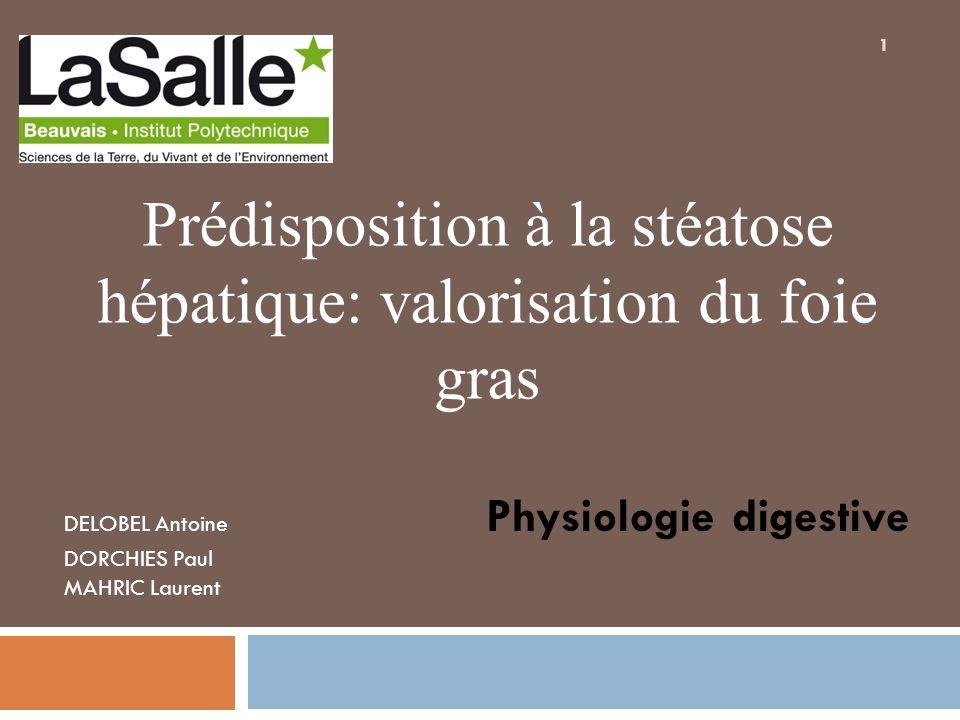 Prédisposition à la stéatose hépatique: valorisation du foie gras DELOBEL Antoine Physiologie digestive DORCHIES Paul MAHRIC Laurent 1