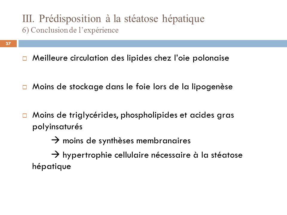 III. Prédisposition à la stéatose hépatique 6) Conclusion de lexpérience Meilleure circulation des lipides chez loie polonaise Moins de stockage dans