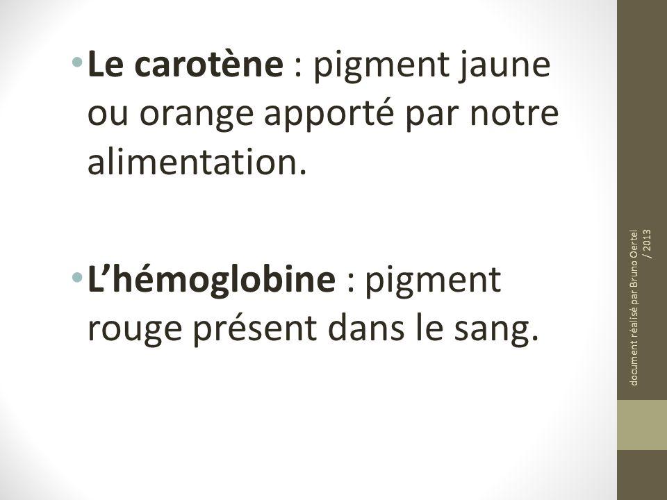 Le carotène : pigment jaune ou orange apporté par notre alimentation. Lhémoglobine : pigment rouge présent dans le sang. document réalisé par Bruno Oe