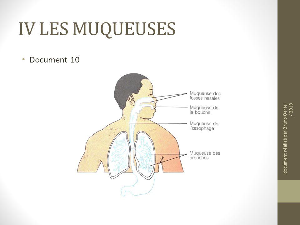 IV LES MUQUEUSES Document 10 document réalisé par Bruno Oertel / 2013