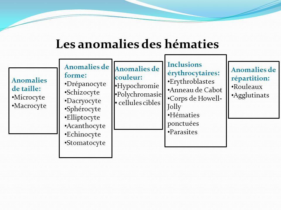 Les anomalies des hématies Anomalies de forme: Drépanocyte Schizocyte Dacryocyte Sphérocyte Elliptocyte Acanthocyte Echinocyte Stomatocyte Anomalies de couleur: Hypochromie Polychromasie cellules cibles Anomalies de répartition: Rouleaux Agglutinats Inclusions érythrocytaires: Erythroblastes Anneau de Cabot Corps de Howell- Jolly Hématies ponctuées Parasites Anomalies de taille: Microcyte Macrocyte