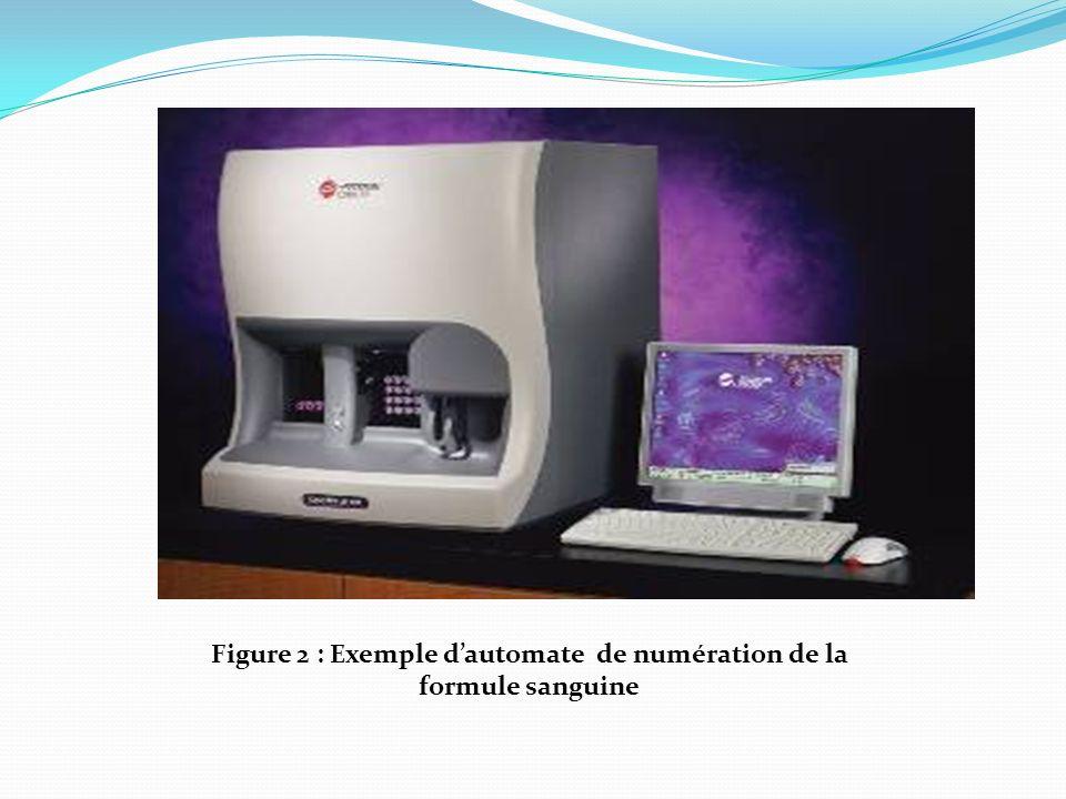 Morphologie des cellules sanguines normales
