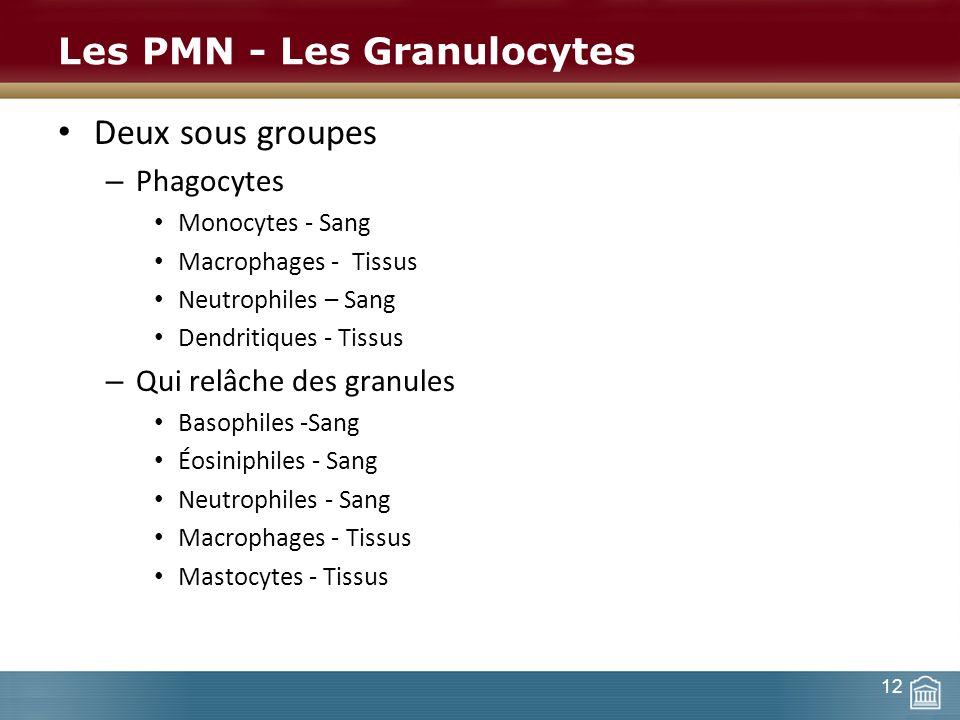 Les PMN - Les Granulocytes Deux sous groupes – Phagocytes Monocytes - Sang Macrophages - Tissus Neutrophiles – Sang Dendritiques - Tissus – Qui relâch