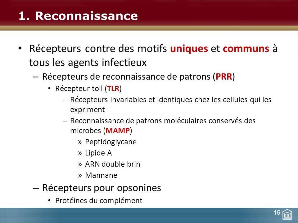 1.Reconnaissance Récepteurs contre des motifs uniques et communs à tous les agents infectieux – Récepteurs de reconnaissance de patrons (PRR) Récepteu
