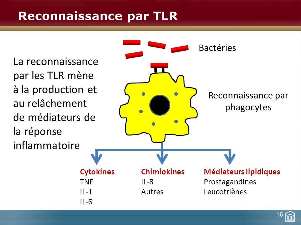 Reconnaissance par TLR Bactéries Reconnaissance par phagocytes La reconnaissance par les TLR mène à la production et au relâchement de médiateurs de l