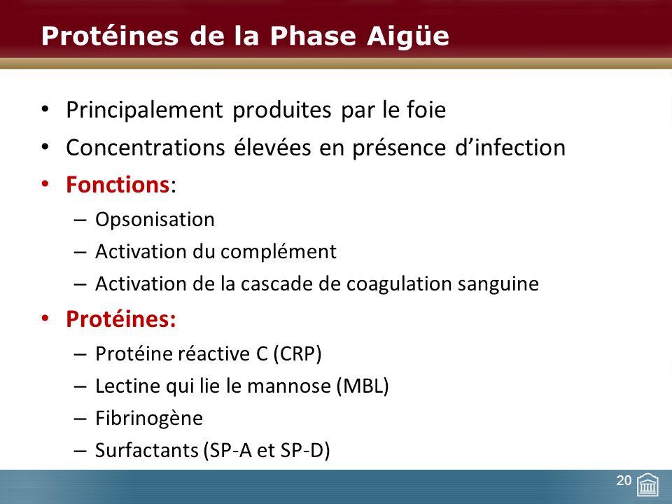Protéines de la Phase Aigüe Principalement produites par le foie Concentrations élevées en présence dinfection Fonctions: – Opsonisation – Activation