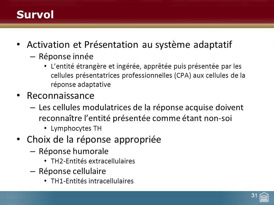 Survol Activation et Présentation au système adaptatif – Réponse innée Lentité étrangère et ingérée, apprêtée puis présentée par les cellules présenta