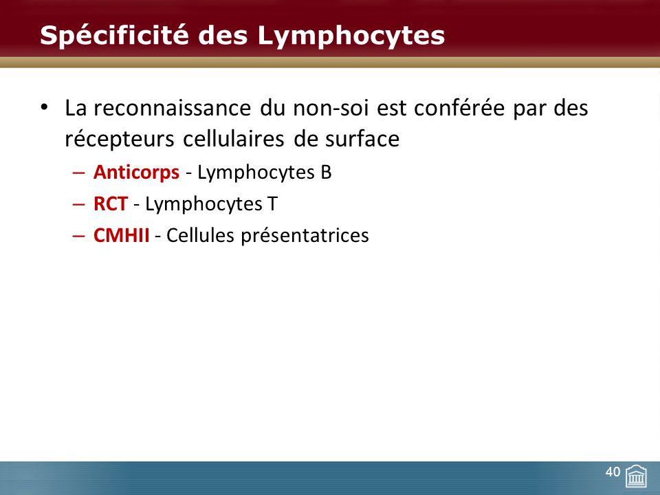 Spécificité des Lymphocytes La reconnaissance du non-soi est conférée par des récepteurs cellulaires de surface – Anticorps - Lymphocytes B – RCT - Ly