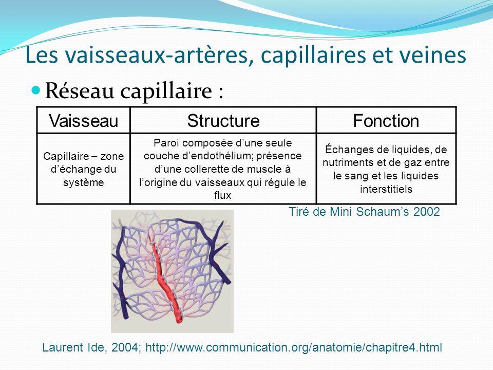 Les vaisseaux-artères, capillaires et veines Réseau capillaire : VaisseauStructureFonction Capillaire – zone déchange du système Paroi composée dune s