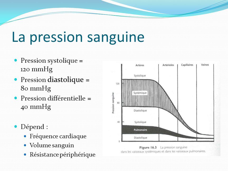 La pression sanguine Pression systolique = 120 mmHg Pression diastolique = 80 mmHg Pression différentielle = 40 mmHg Dépend : Fréquence cardiaque Volu