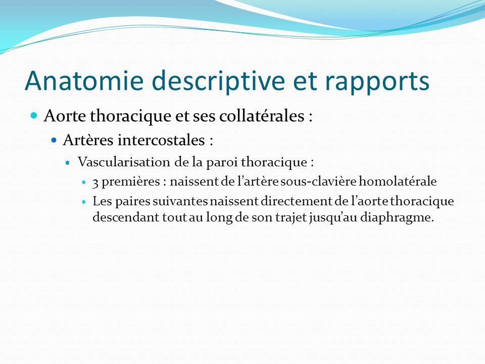 Anatomie descriptive et rapports Aorte thoracique et ses collatérales : Artères intercostales : Vascularisation de la paroi thoracique : 3 premières :