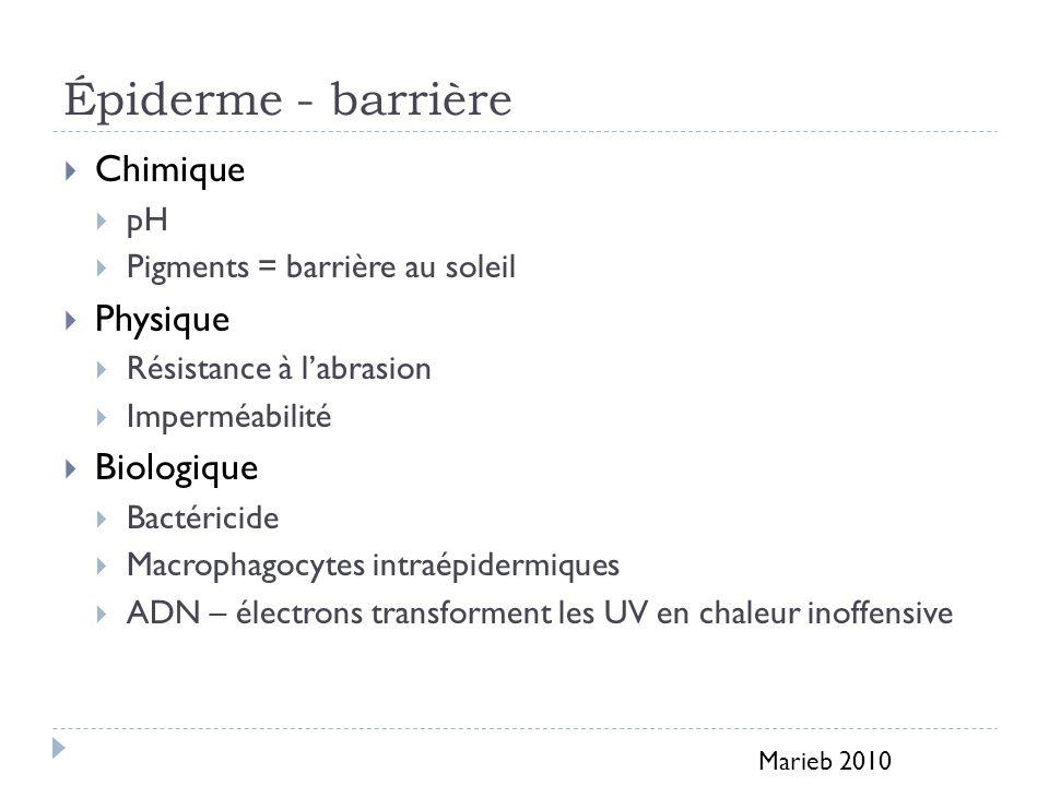 Épiderme - barrière Chimique pH Pigments = barrière au soleil Physique Résistance à labrasion Imperméabilité Biologique Bactéricide Macrophagocytes in