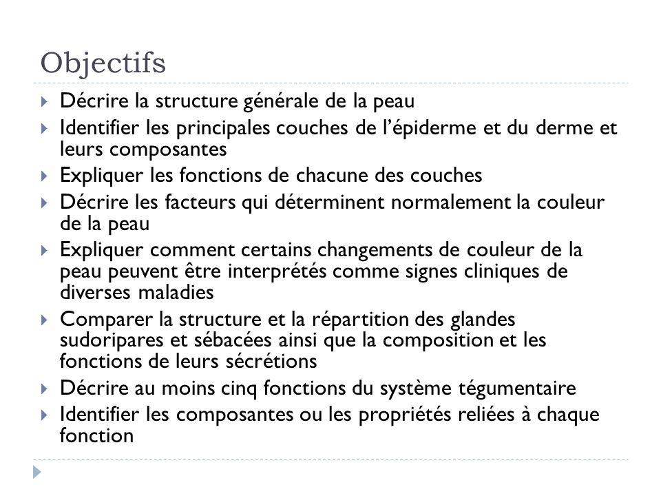 Objectifs Décrire la structure générale de la peau Identifier les principales couches de lépiderme et du derme et leurs composantes Expliquer les fonc