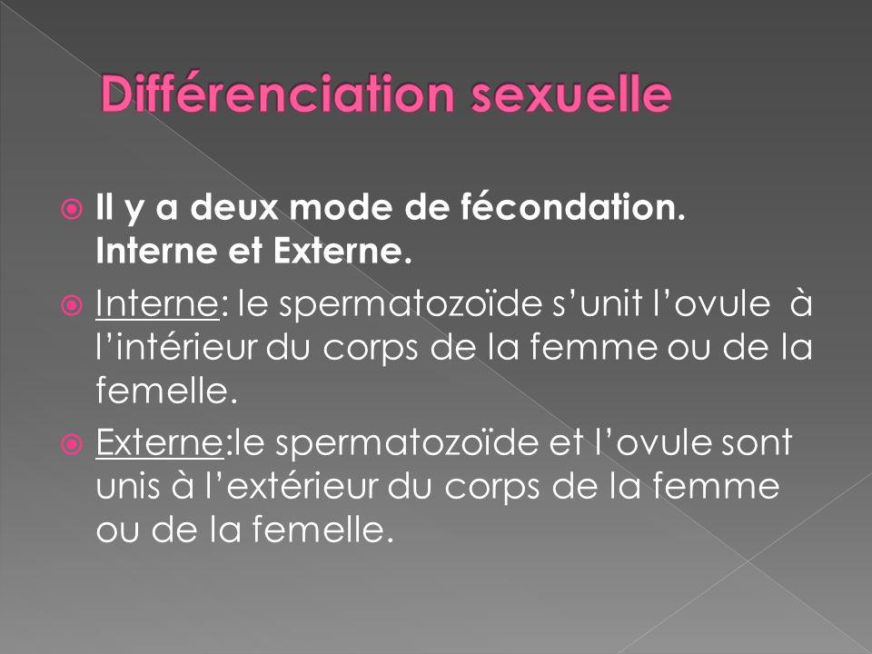 Il y a deux mode de fécondation. Interne et Externe. Interne: le spermatozoïde sunit lovule à lintérieur du corps de la femme ou de la femelle. Extern