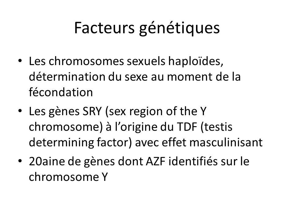 Facteurs génétiques Les chromosomes sexuels haploïdes, détermination du sexe au moment de la fécondation Les gènes SRY (sex region of the Y chromosome