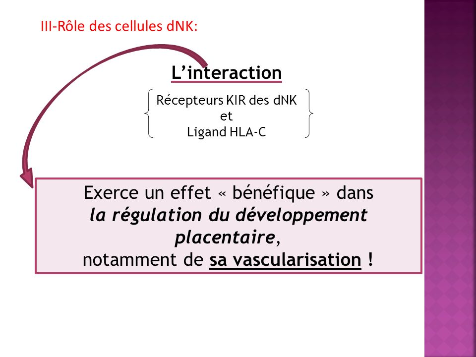 III-Rôle des cellules dNK: Linteraction Récepteurs KIR des dNK et Ligand HLA-C Exerce un effet « bénéfique » dans la régulation du développement placentaire, notamment de sa vascularisation !