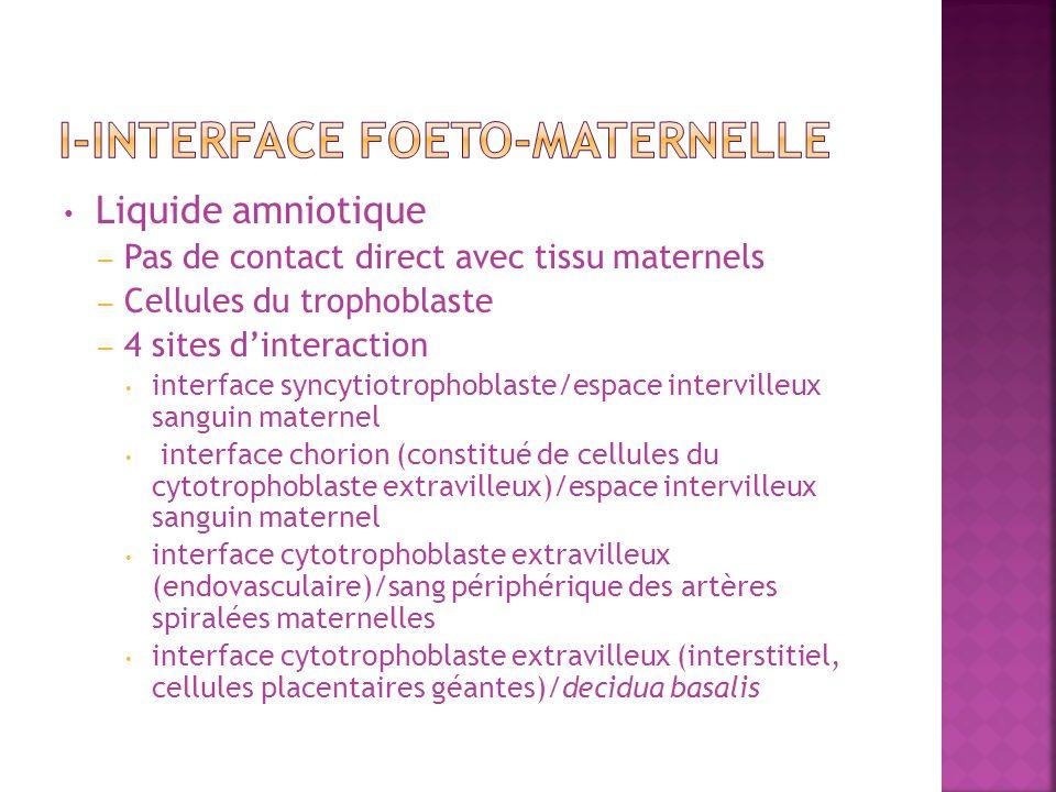 Liquide amniotique – Pas de contact direct avec tissu maternels – Cellules du trophoblaste – 4 sites dinteraction interface syncytiotrophoblaste/espac