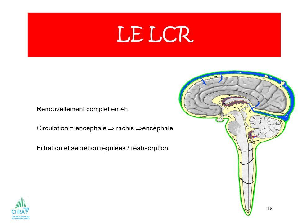 18 Renouvellement complet en 4h Circulation = encéphale rachis encéphale Filtration et sécrétion régulées / réabsorption LE LCR