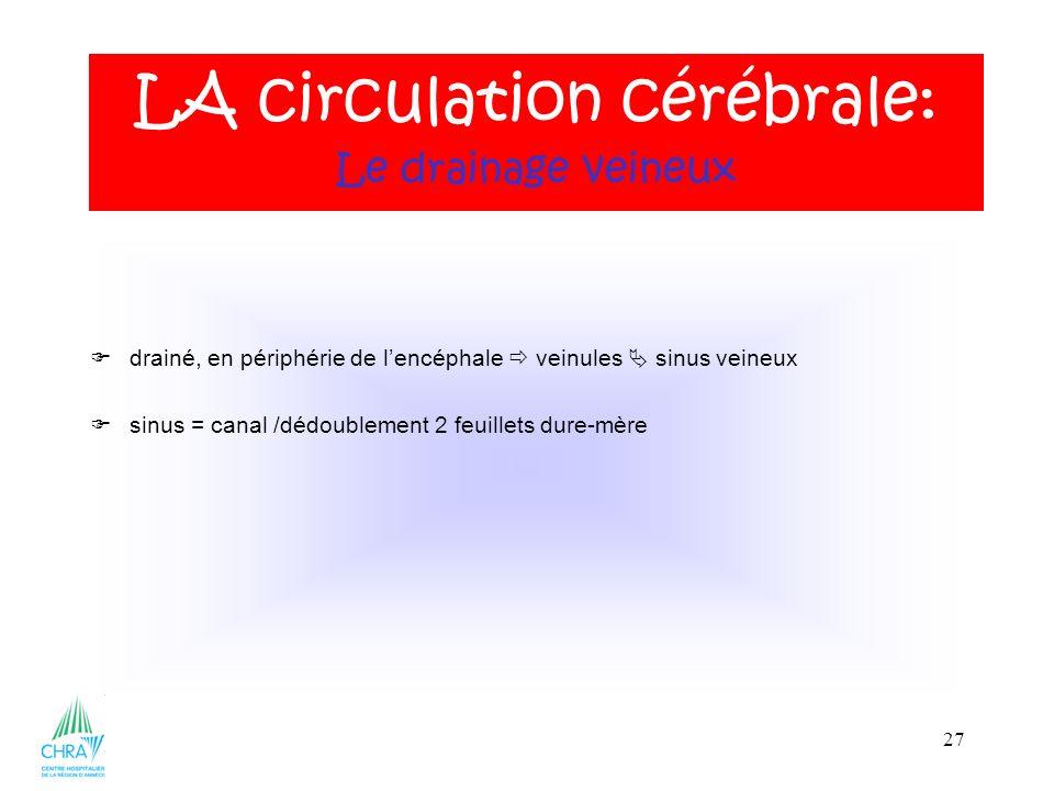 27 drainé, en périphérie de lencéphale veinules sinus veineux sinus = canal /dédoublement 2 feuillets dure-mère LA circulation cérébrale: Le drainage