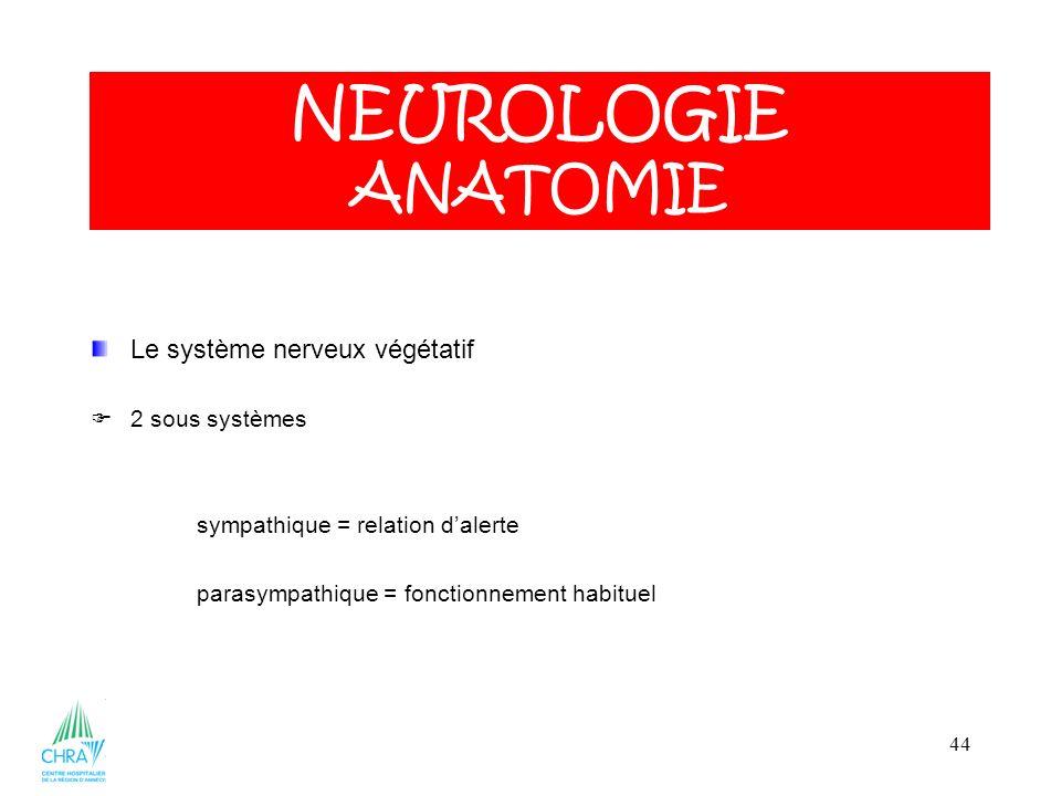 44 Le système nerveux végétatif 2 sous systèmes sympathique = relation dalerte parasympathique = fonctionnement habituel NEUROLOGIE ANATOMIE