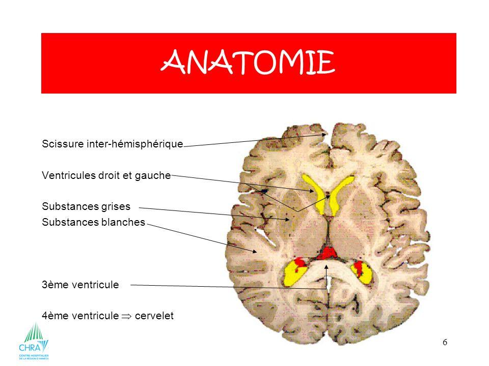 6 Scissure inter-hémisphérique Ventricules droit et gauche Substances grises Substances blanches 3ème ventricule 4ème ventricule cervelet ANATOMIE