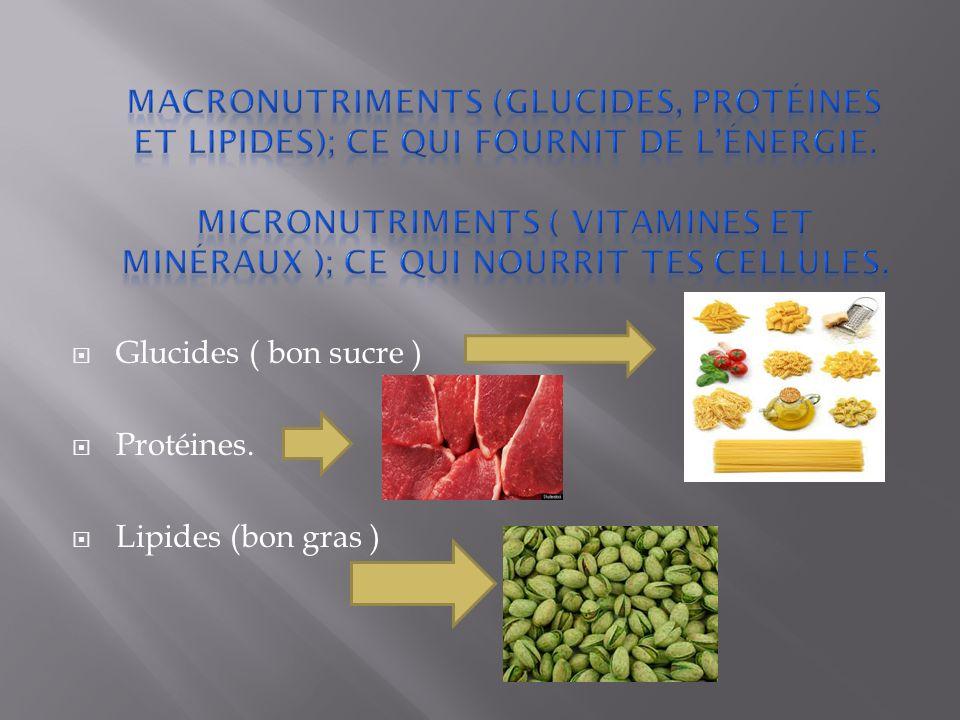 Glucides ( bon sucre ) Protéines. Lipides (bon gras )