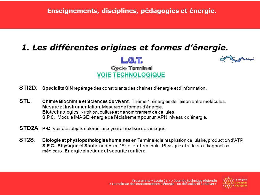 Enseignements, disciplines, pédagogies et énergie. 1. Les différentes origines et formes dénergie. Programme « Lycée 21 » > Journée technique régional