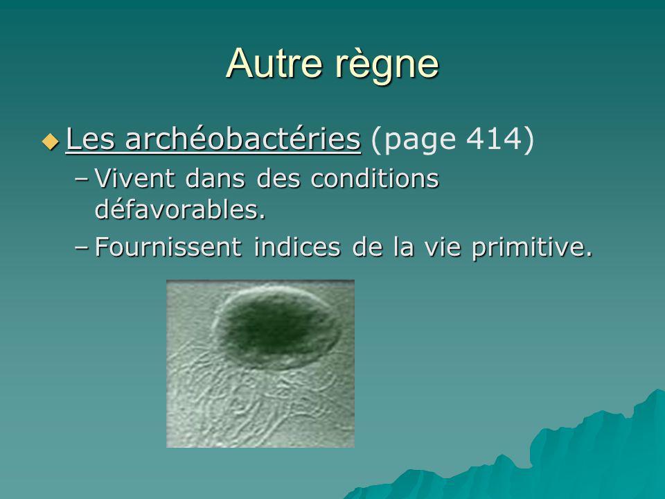 Autre règne Les archéobactéries Les archéobactéries (page 414) –Vivent dans des conditions défavorables. –Fournissent indices de la vie primitive.