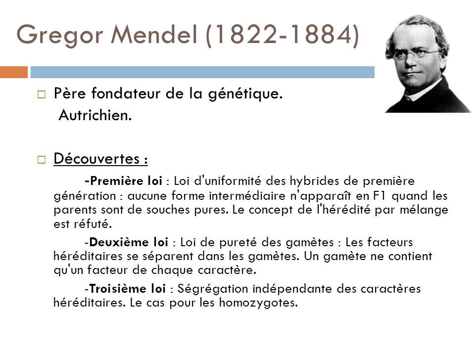 Gregor Mendel (1822-1884) Père fondateur de la génétique. Autrichien. Découvertes : - Première loi : Loi d'uniformité des hybrides de première générat