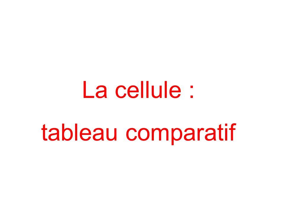 Cellule eucaryote Cellule procaryote Cellule animaleCellule végétaleBactérie 1 2 4 5