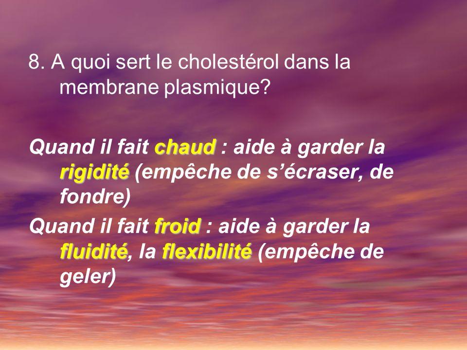 8. A quoi sert le cholestérol dans la membrane plasmique? chaud rigidité Quand il fait chaud : aide à garder la rigidité (empêche de sécraser, de fond