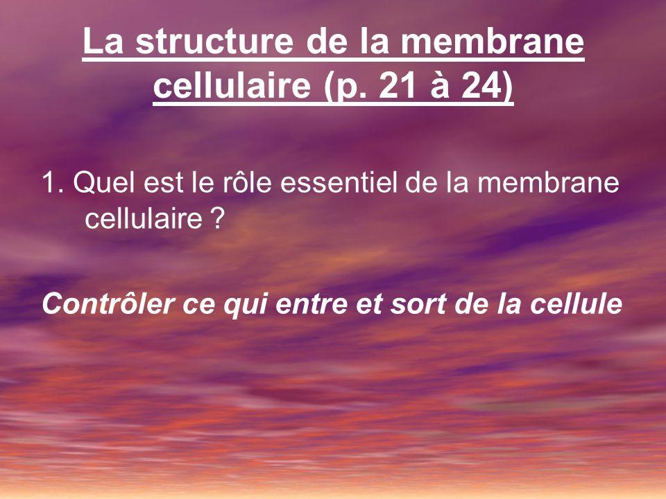 La structure de la membrane cellulaire (p. 21 à 24) 1. Quel est le rôle essentiel de la membrane cellulaire ? Contrôler ce qui entre et sort de la cel
