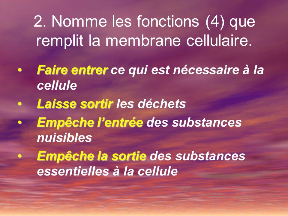 2. Nomme les fonctions (4) que remplit la membrane cellulaire. Faire entrerFaire entrer ce qui est nécessaire à la cellule Laisse sortirLaisse sortir