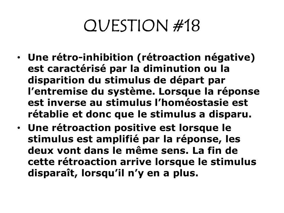 QUESTION #18 Une rétro-inhibition (rétroaction négative) est caractérisé par la diminution ou la disparition du stimulus de départ par lentremise du s